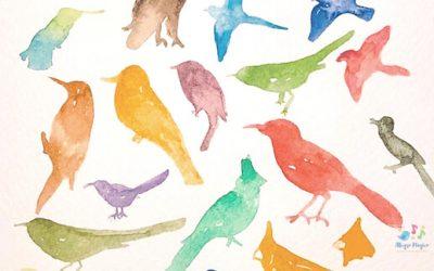 Los pájaros en la música clásica.