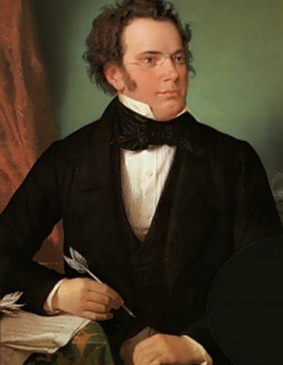 Schubert de adulto